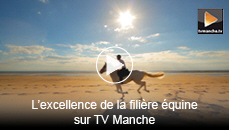 L'excellence de la fili�re �quine sur TV Manche